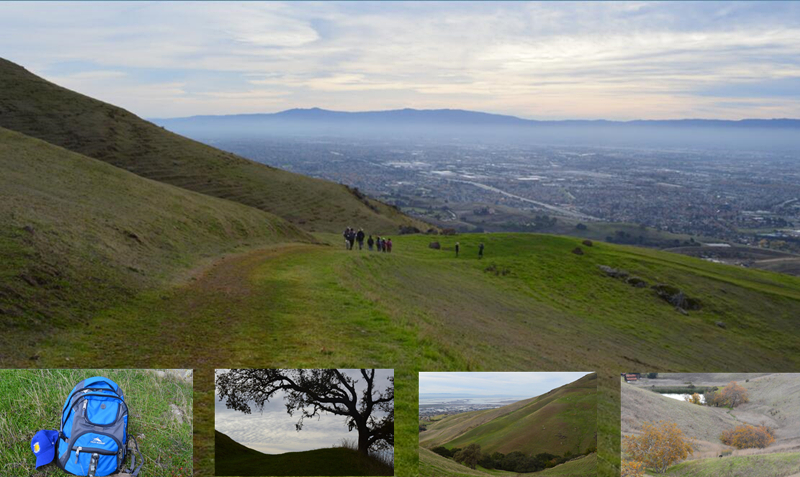 bay area ridge trail23_0