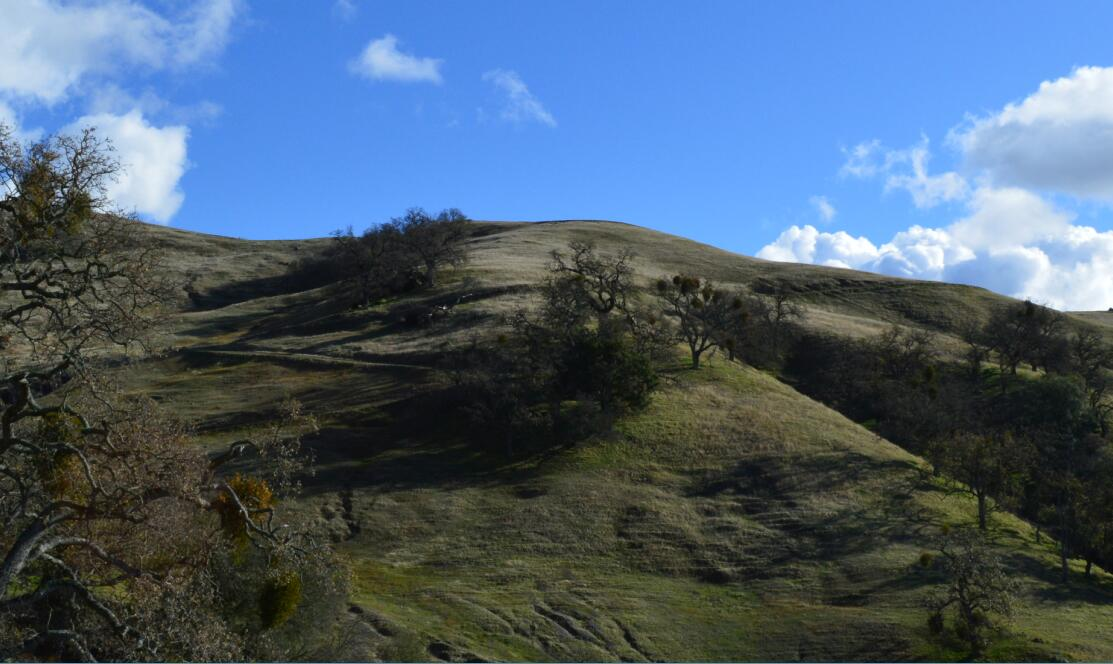 sunol regional wilderness49