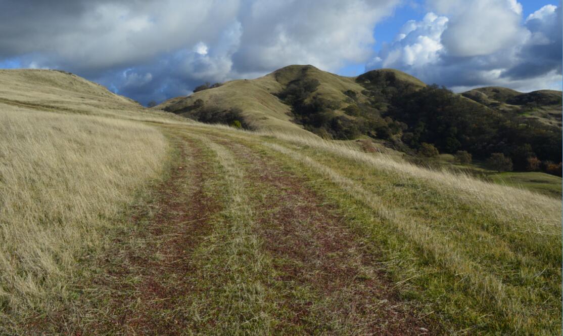 sunol regional wilderness64