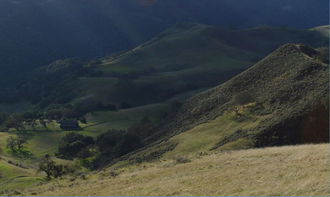 sunol regional wilderness65