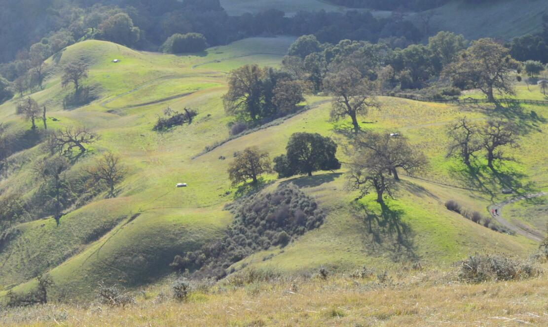 sunol regional wilderness72