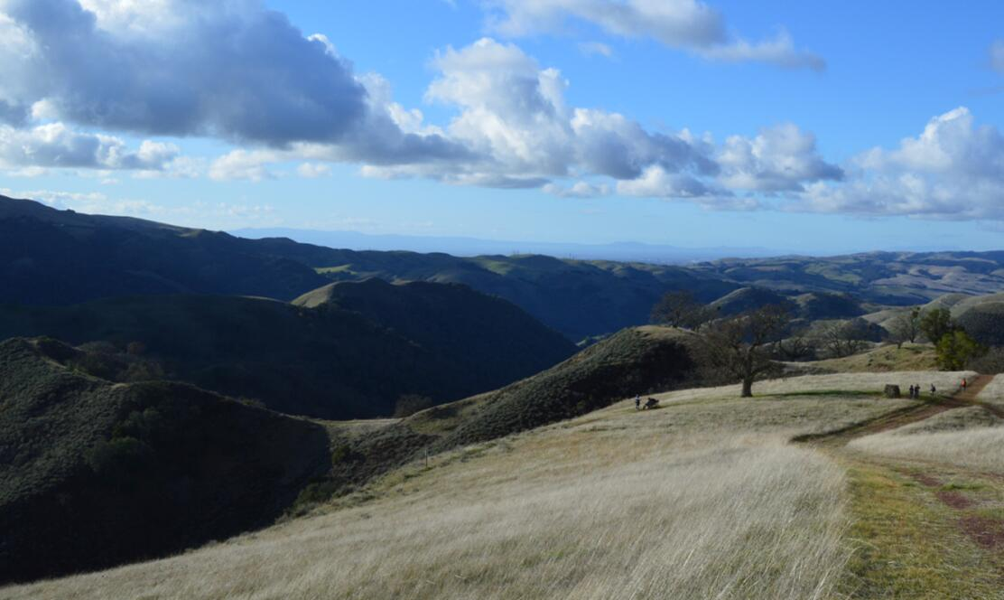 sunol regional wilderness73