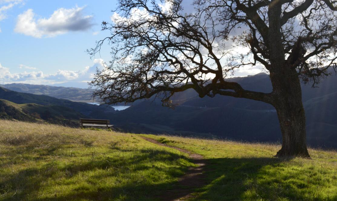 sunol regional wilderness75