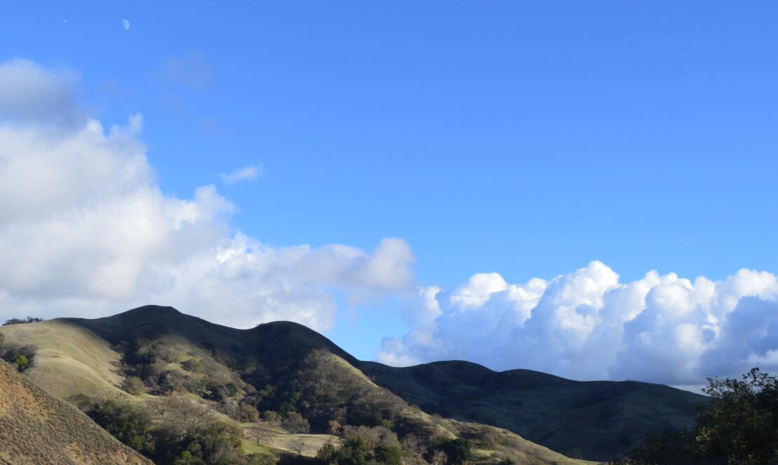 sunol regional wilderness77