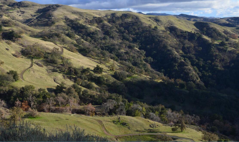 sunol regional wilderness78