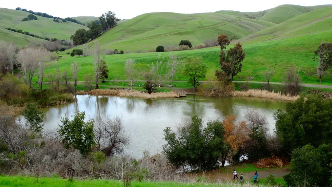 Garin Dry Creek Regional park72