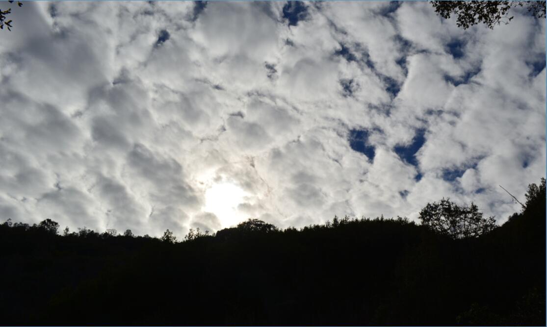 Mount Diablo Eagle Peak Trail10
