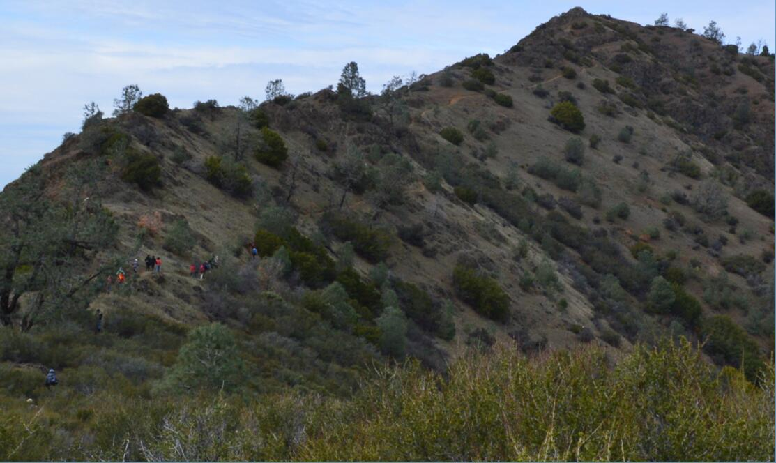 Mount Diablo Eagle Peak Trail24