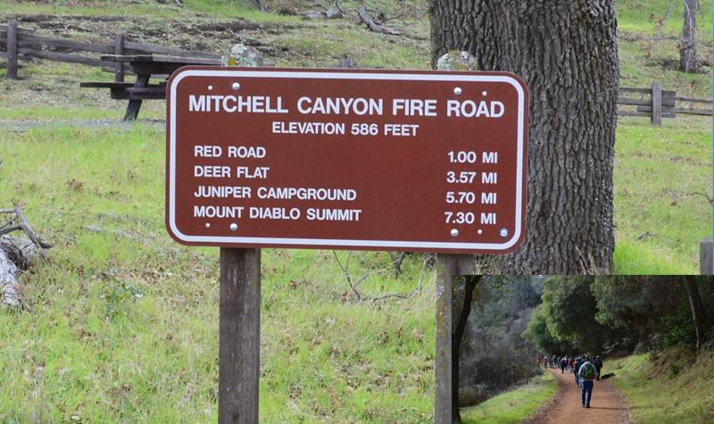 Mount Diablo Eagle Peak Trail2_0