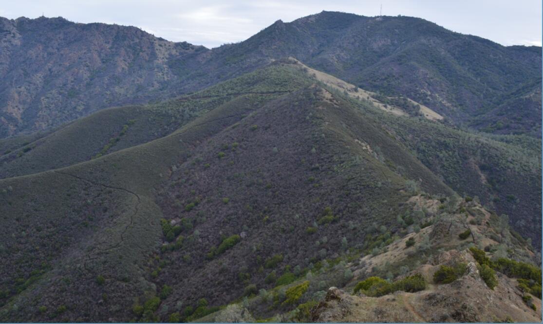 Mount Diablo Eagle Peak Trail31