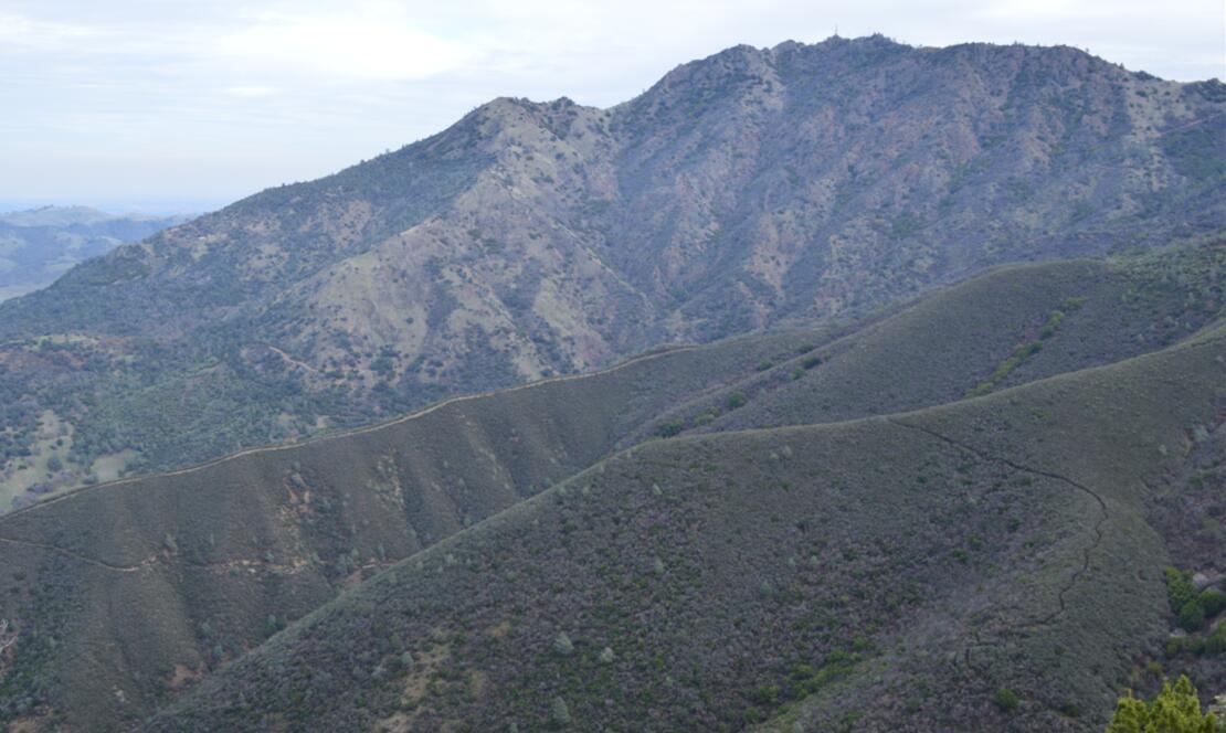 Mount Diablo Eagle Peak Trail35