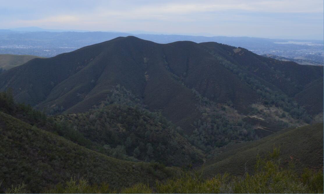 Mount Diablo Eagle Peak Trail38