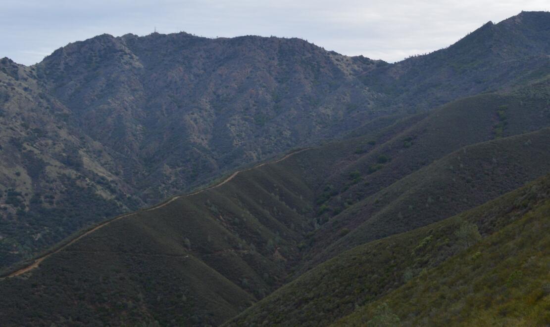 Mount Diablo Eagle Peak Trail42