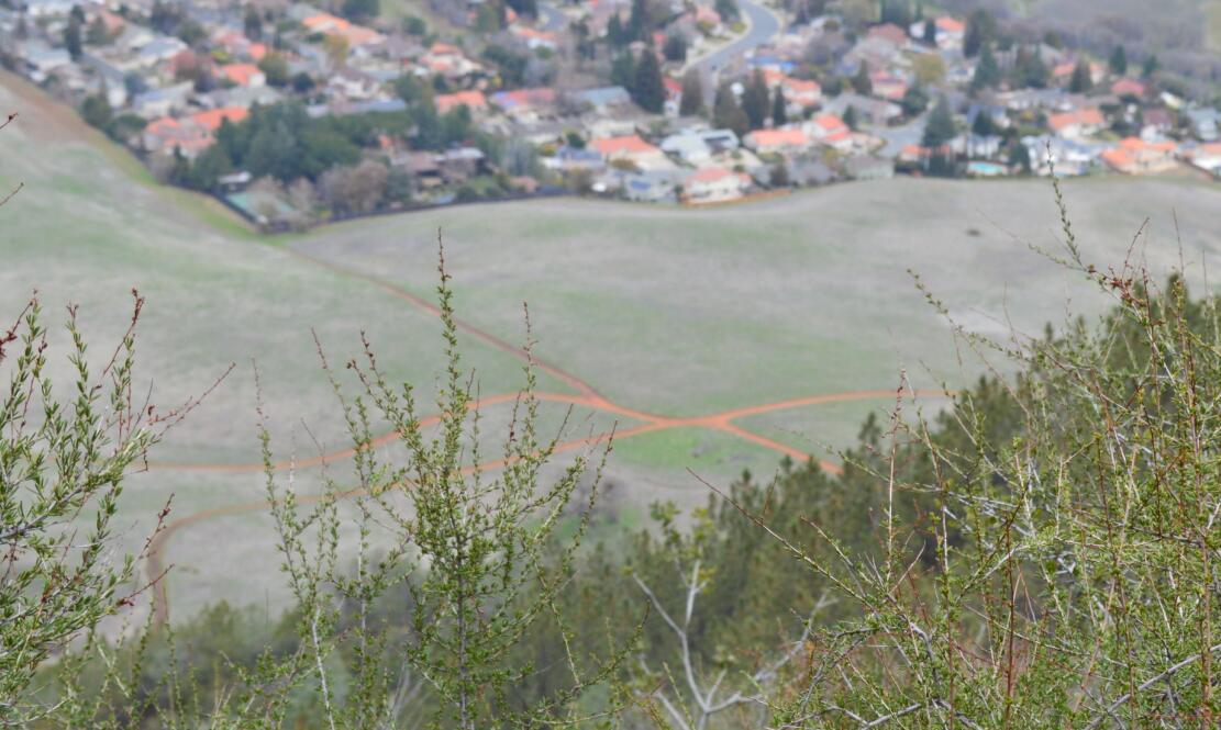 Mount Diablo Eagle Peak Trail45