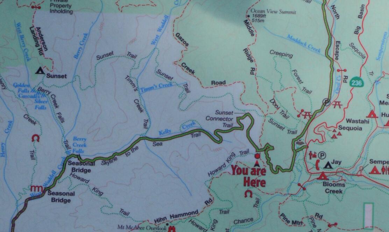Big Basin Redwoods State Park Berry Creek Falls Loop12