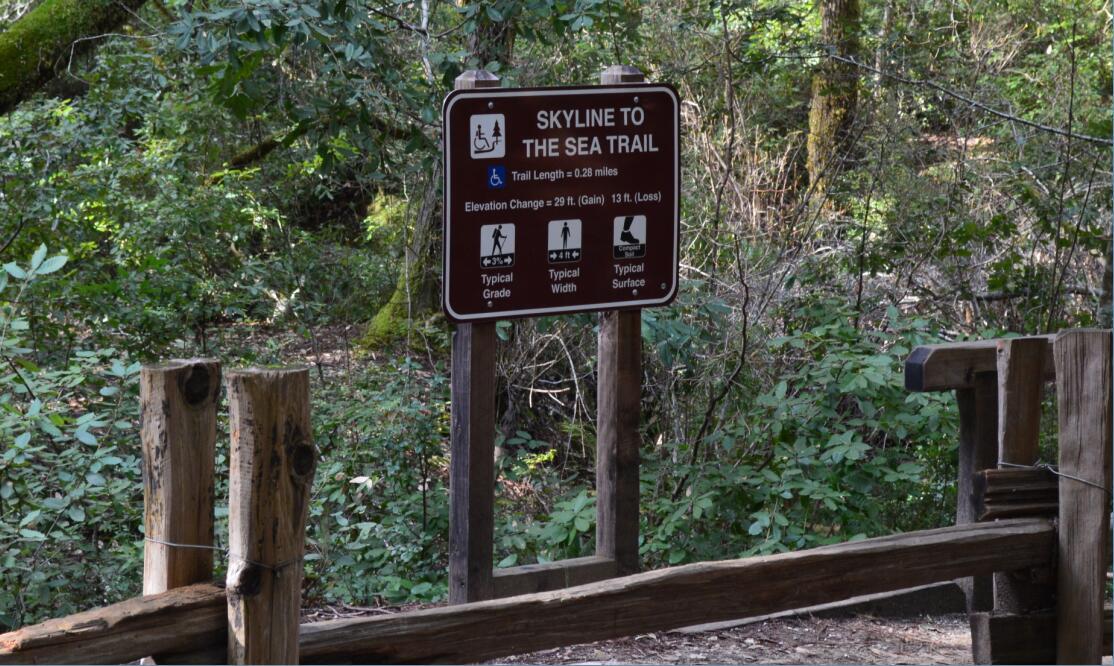 Big Basin Redwoods State Park Berry Creek Falls Loop2