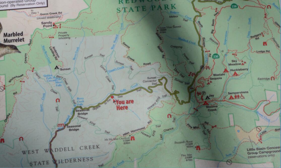 Big Basin Redwoods State Park Berry Creek Falls Loop21