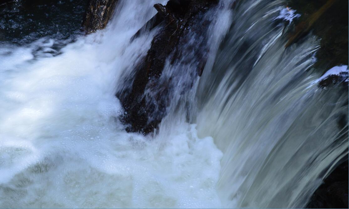 Big Basin Redwoods State Park Berry Creek Falls Loop28