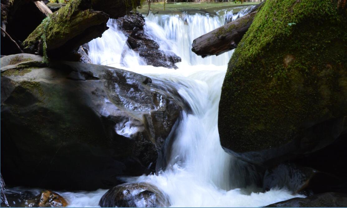 Big Basin Redwoods State Park Berry Creek Falls Loop30