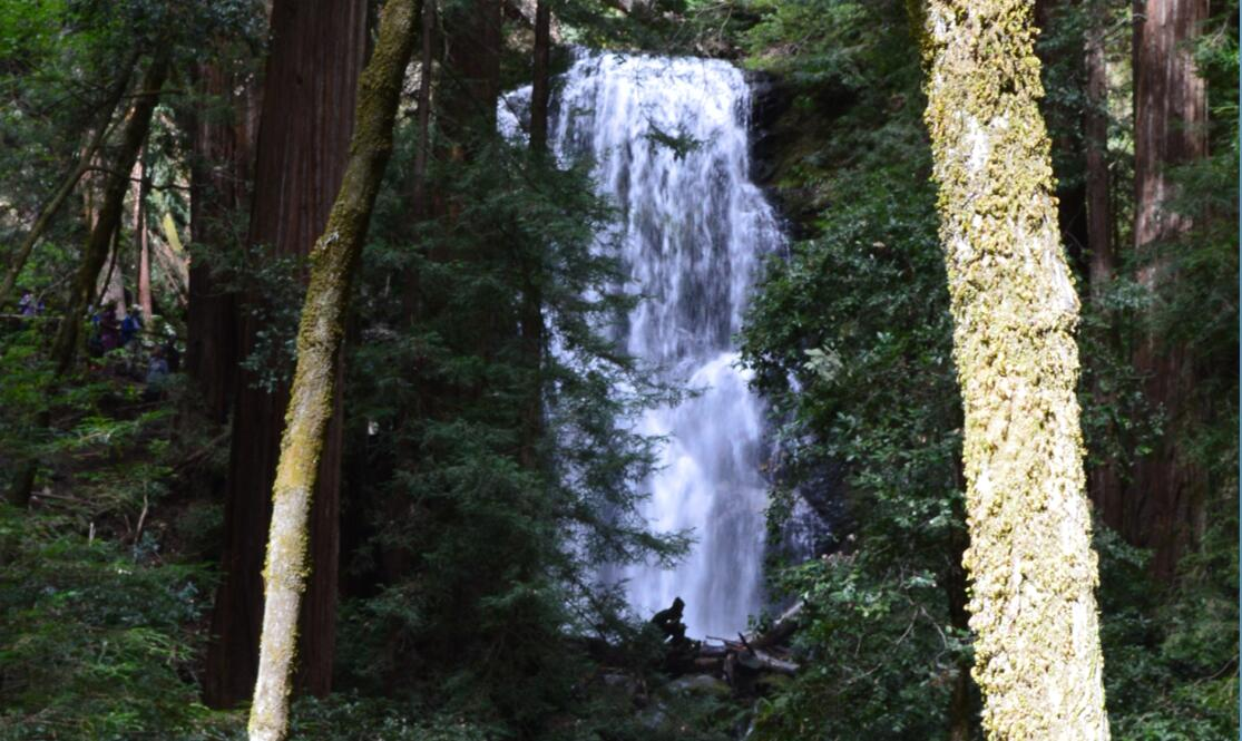 Big Basin Redwoods State Park Berry Creek Falls Loop40