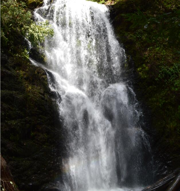 Big Basin Redwoods State Park Berry Creek Falls Loop49