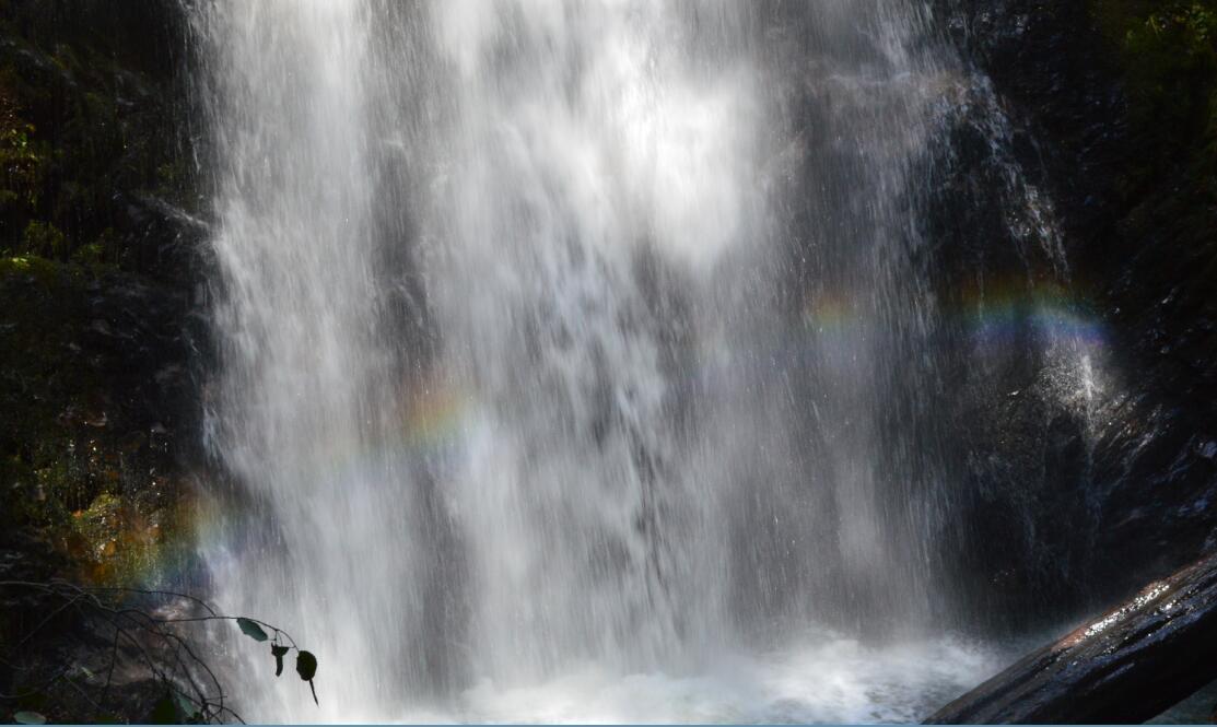 Big Basin Redwoods State Park Berry Creek Falls Loop50_2