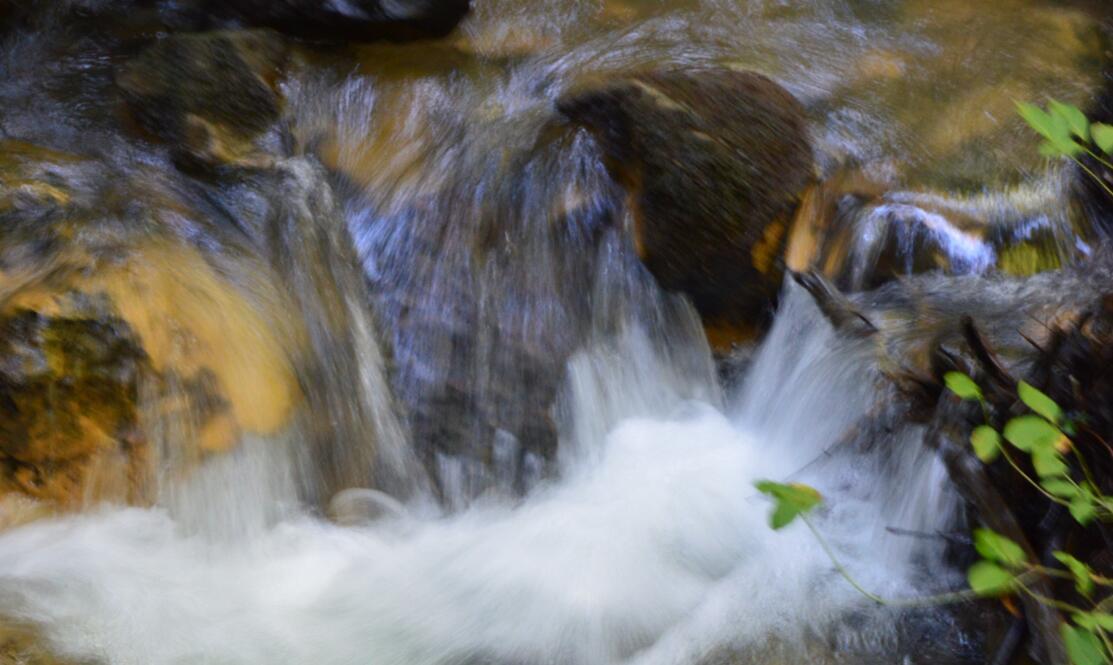 Big Basin Redwoods State Park Berry Creek Falls Loop56