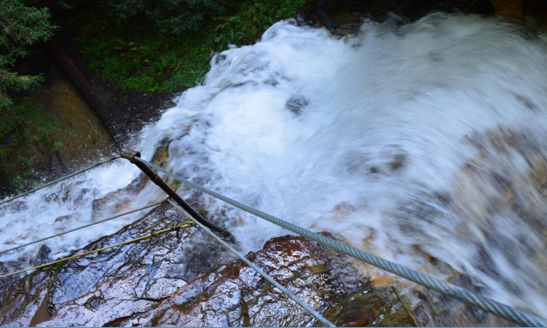 Big Basin Redwoods State Park Berry Creek Falls Loop61_4