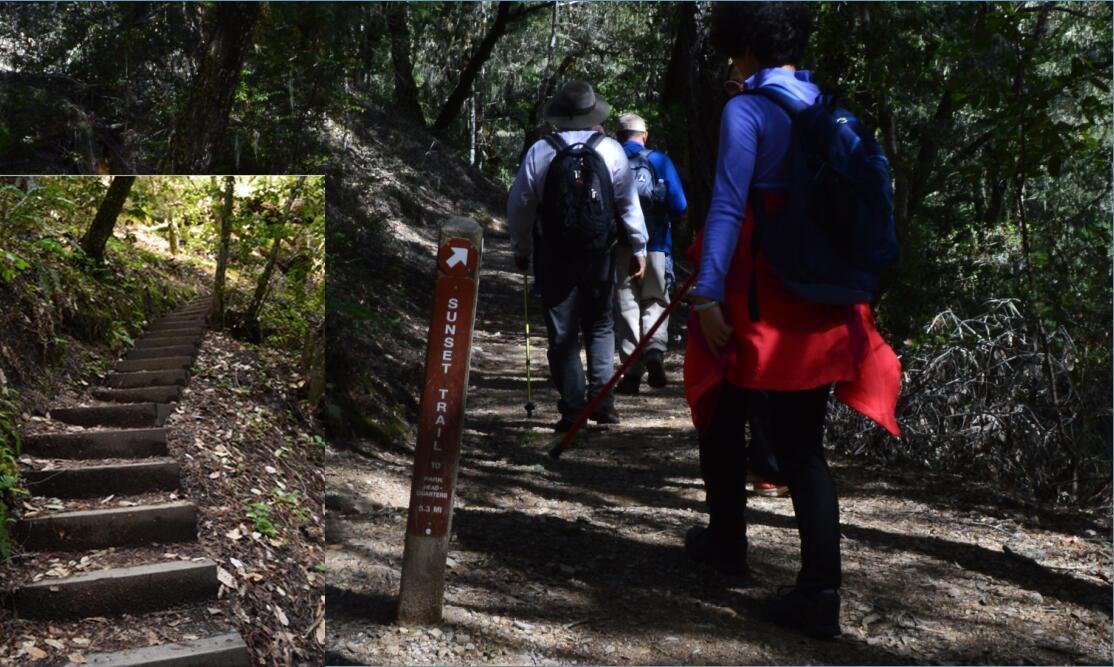 Big Basin Redwoods State Park Berry Creek Falls Loop64_1_0