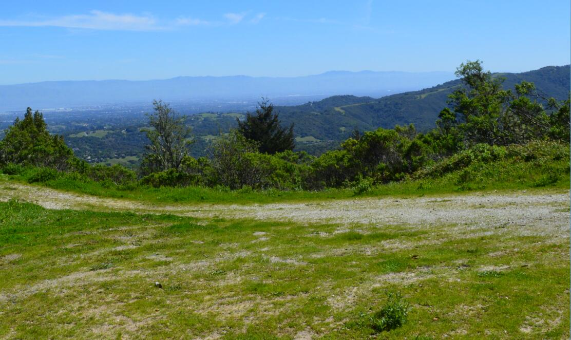 Windy Hill Open Space Preserve19_6