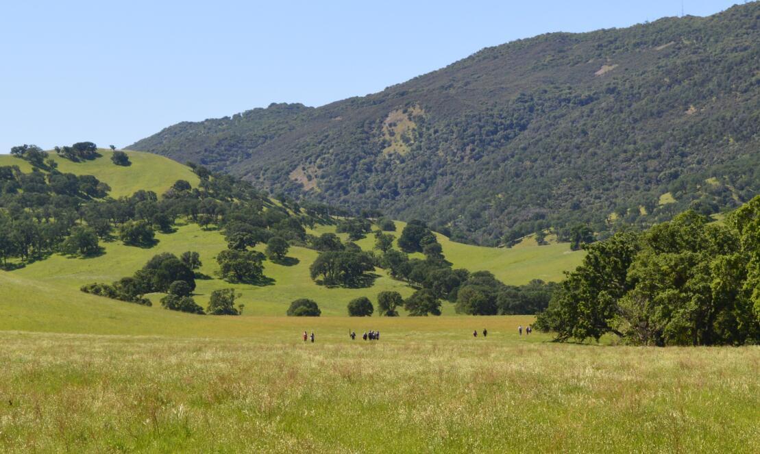 Round Valley Regional Preserve11