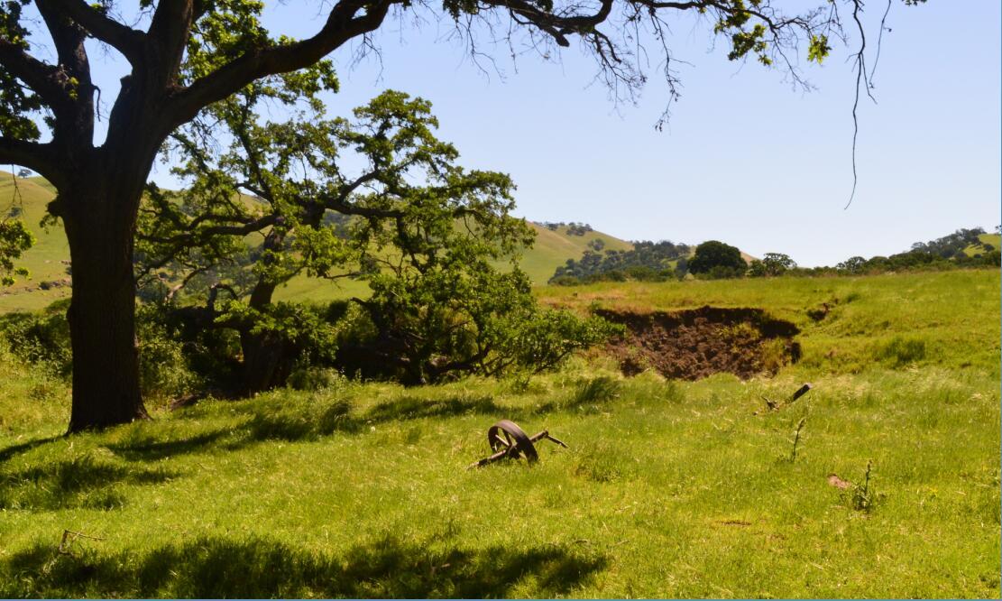 Round Valley Regional Preserve17