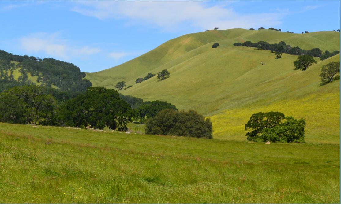 Round Valley Regional Preserve25