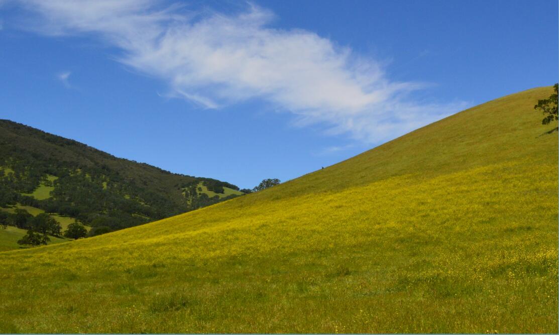 Round Valley Regional Preserve27