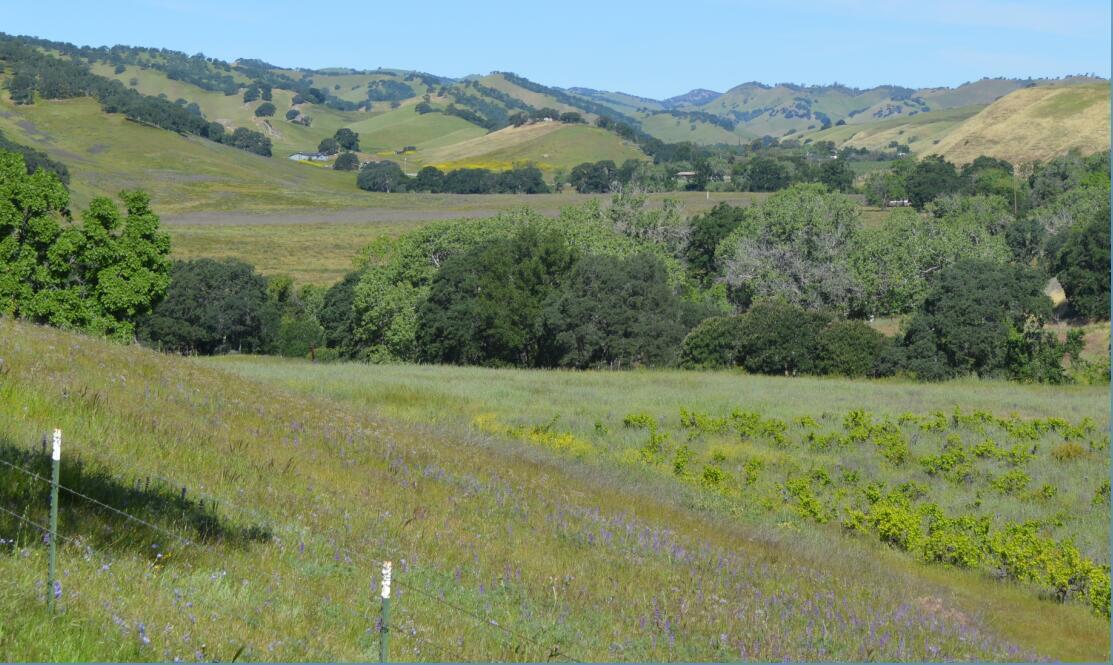 Round Valley Regional Preserve2_0