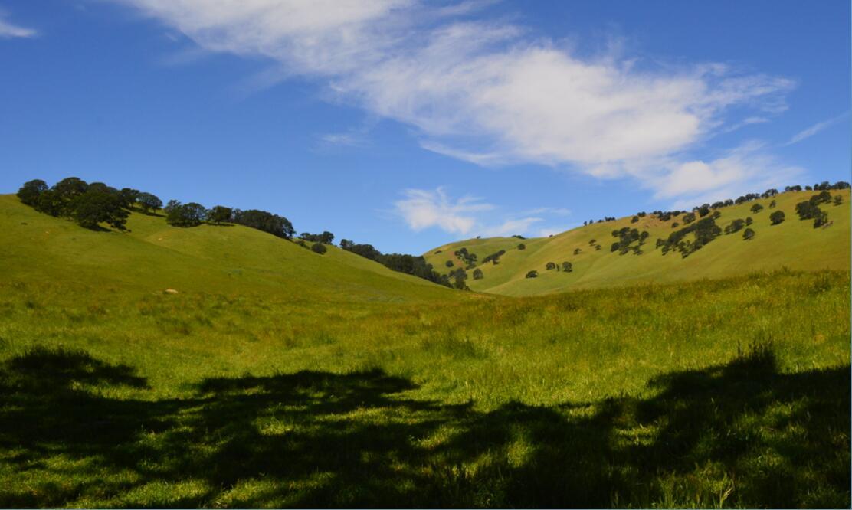 Round Valley Regional Preserve31