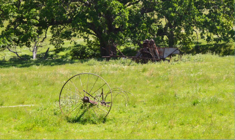 Round Valley Regional Preserve32