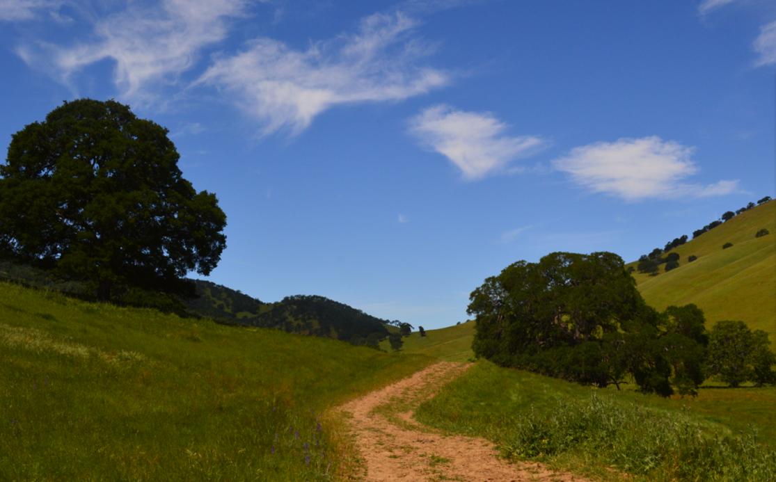 Round Valley Regional Preserve40