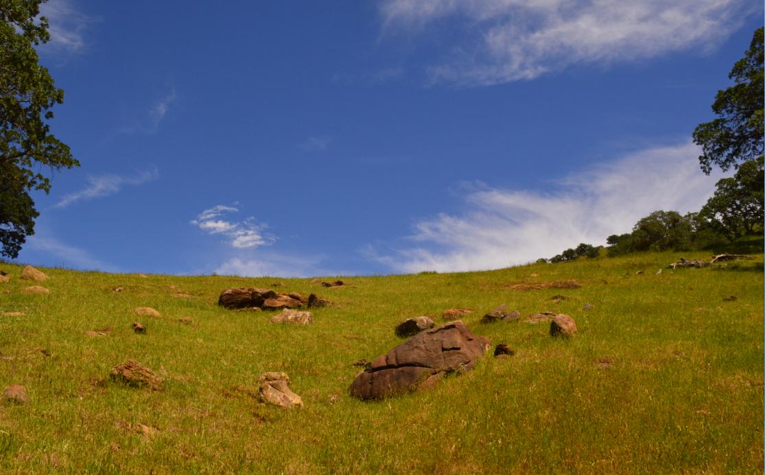 Round Valley Regional Preserve41