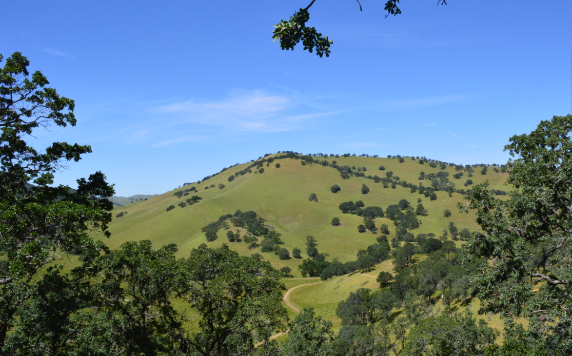 Round Valley Regional Preserve42