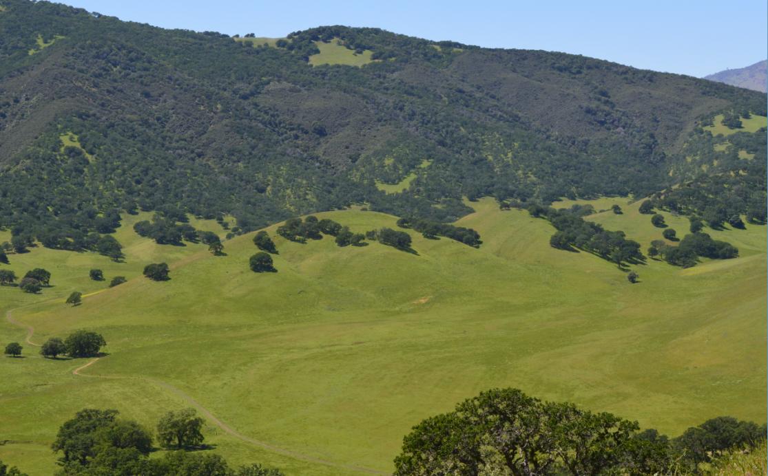 Round Valley Regional Preserve45