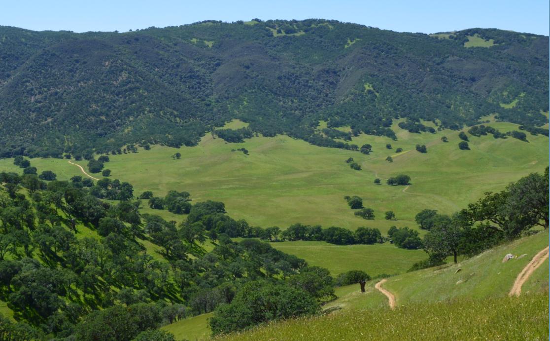 Round Valley Regional Preserve48