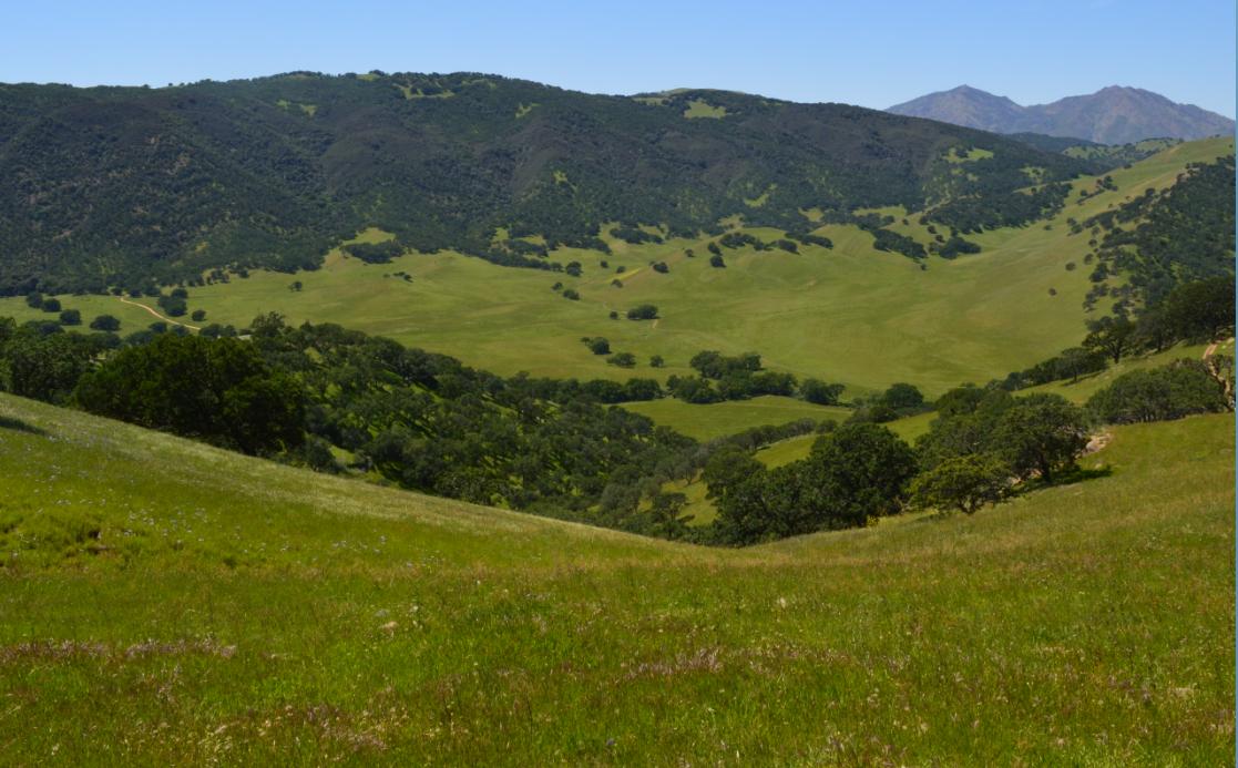 Round Valley Regional Preserve49