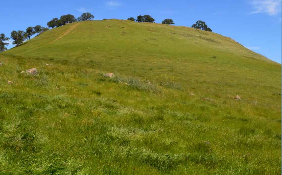 Round Valley Regional Preserve50