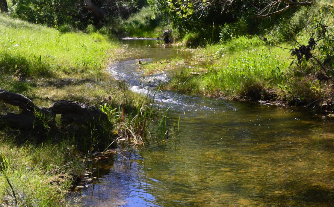 Round Valley Regional Preserve59