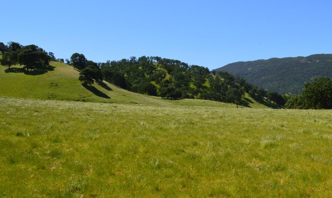 Round Valley Regional Preserve8
