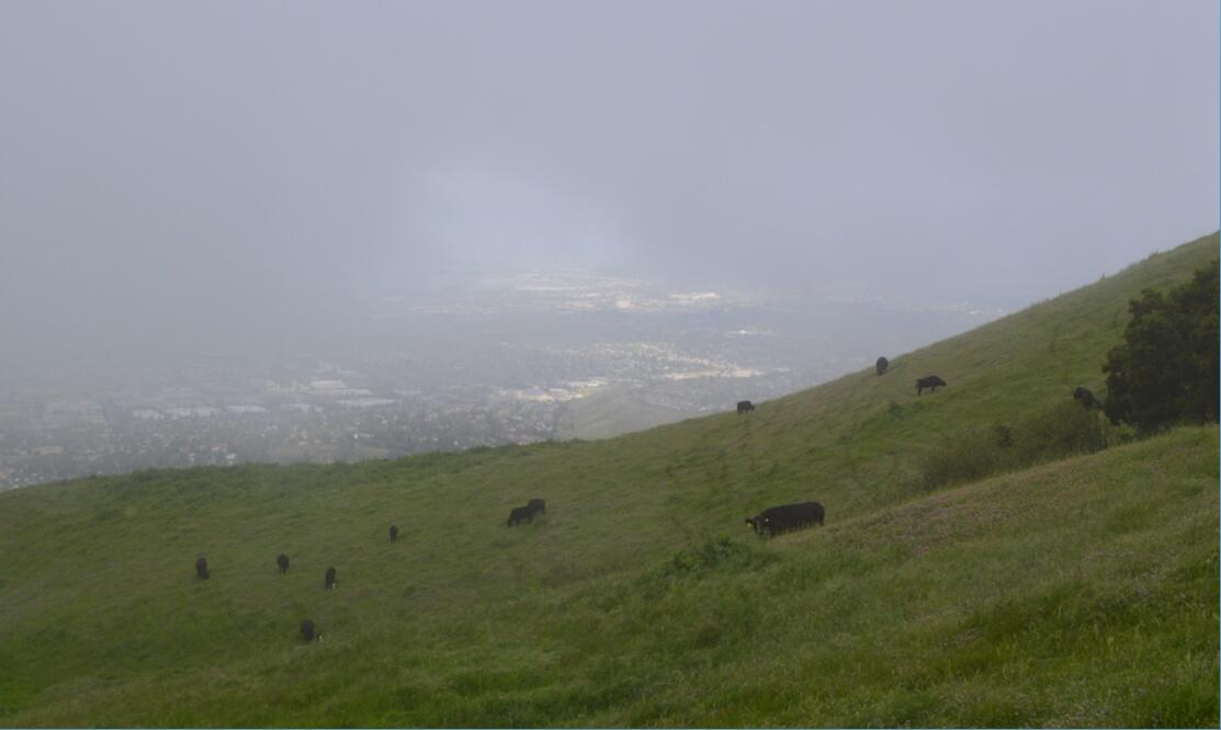 mission peak sunrise39