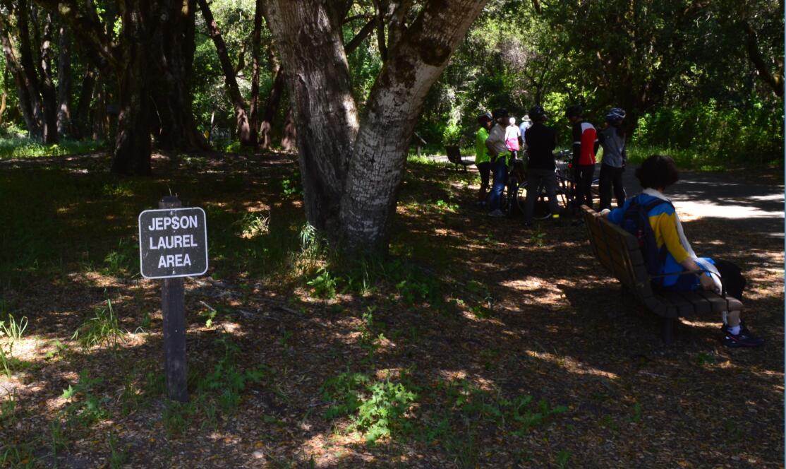 sawyer camp trail11