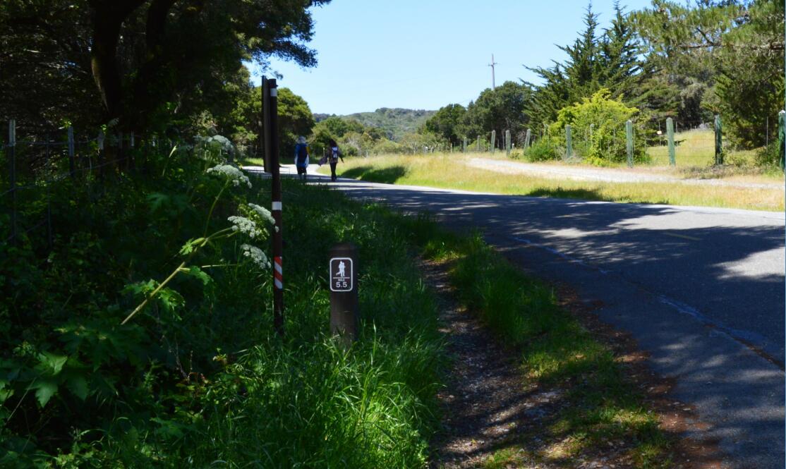 sawyer camp trail22