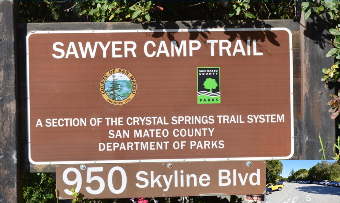 sawyer camp trail2_0